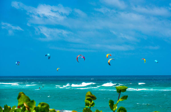Blue Green Bliss Photography Art | Burke Young Photography