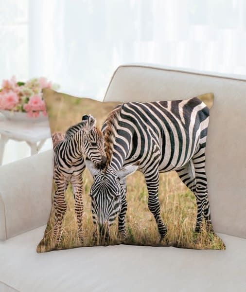 Pillow   Stripes | Carol Brooks Parker Fine Art Photography