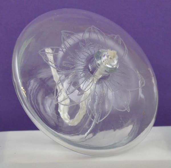 Diana Rossell - original artwork - glass - glass engraving - nature - flowers - lotus blossom - Illumination