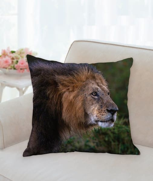 Pillow   Wet Lion | Carol Brooks Parker Fine Art Photography