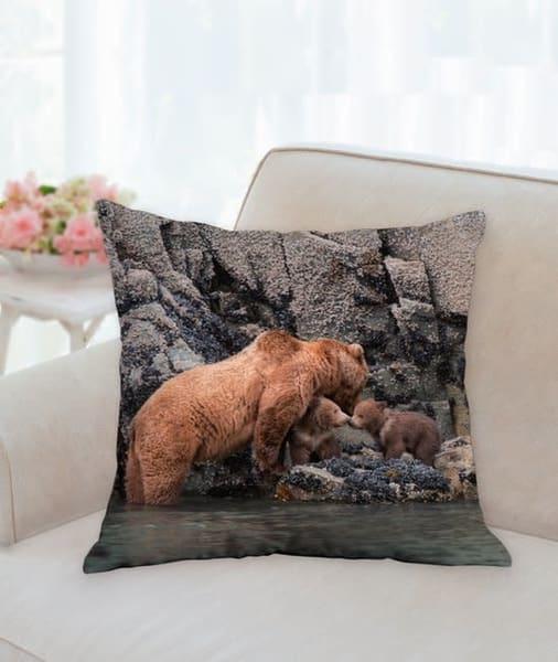 Pillow   Trail's End | Carol Brooks Parker Fine Art Photography