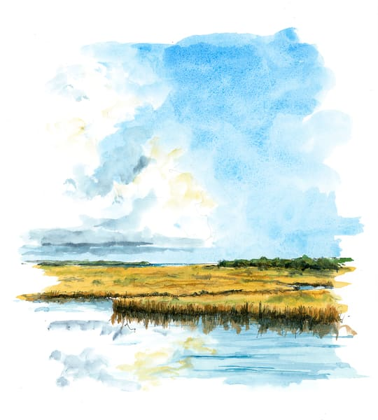 Low Country Sky Art | Digital Arts Studio / Fine Art Marketplace