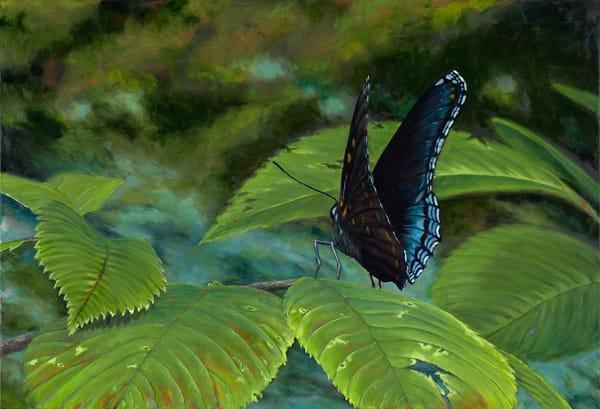 Butterfly Art | Roxana Sinex Art