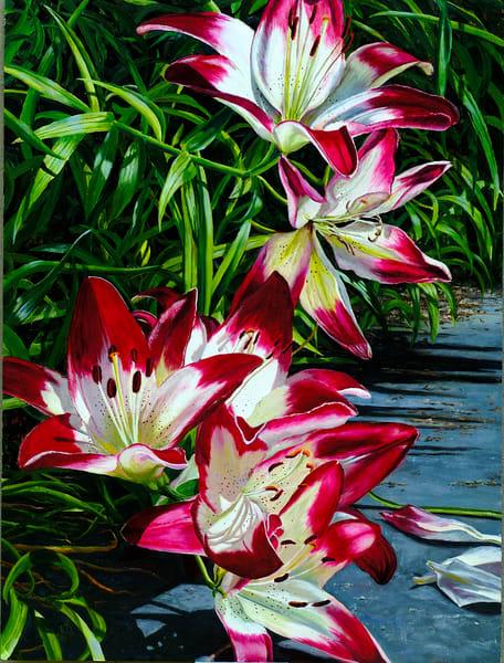 Lilies Art | Roxana Sinex Art