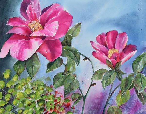 Fuchsia camellia watercolor painting