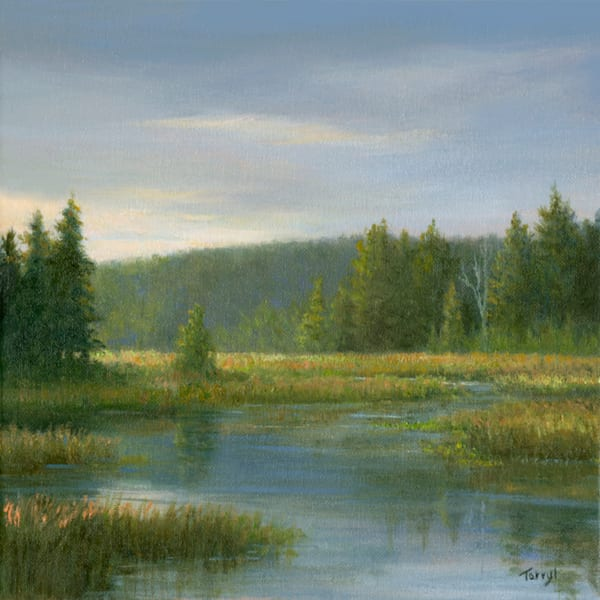 *Marsh At The Paul Smith's Visitor's Interpretive Center, (The Vic)* Art | Tarryl Fine Art