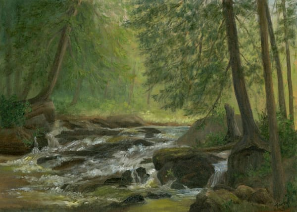 *Hidden Falls, Meatcham Pond Outlet* Art | Tarryl Fine Art