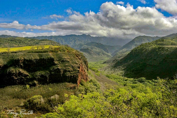Hawaii's A Sense of Peace by Terry Rosiak