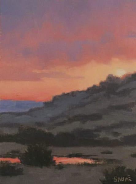 Desert Sky Reflection  Art   Terry Sauve Fine Art