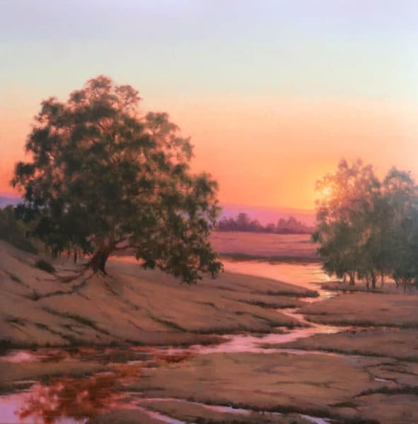 Wetland Sunset Color Art | Terry Sauve Fine Art