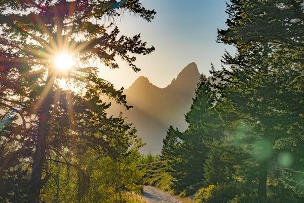 Teton Sunstar  Photography Art | Alex Nueschaefer Photography