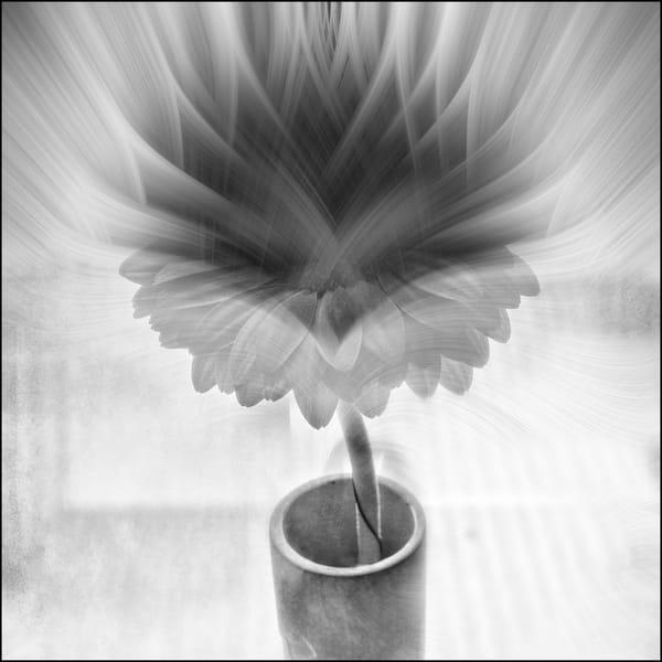 22square Art | Roy Fraser Photographer