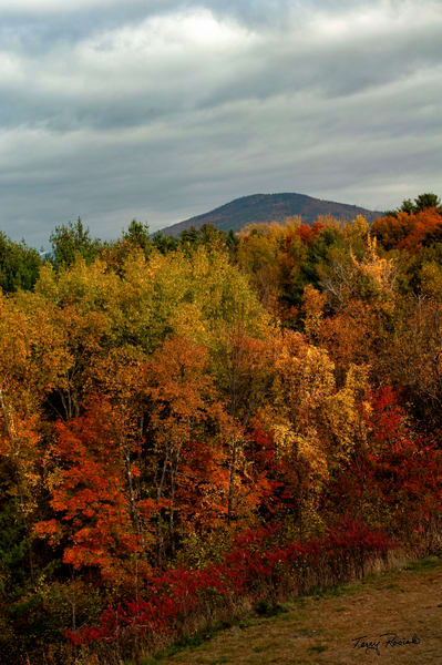 Heavy Clouds in the Fall in New England by Terry Rosiak