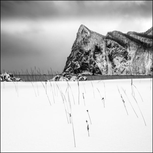 Hokkaido Study03 Art   Roy Fraser Photographer