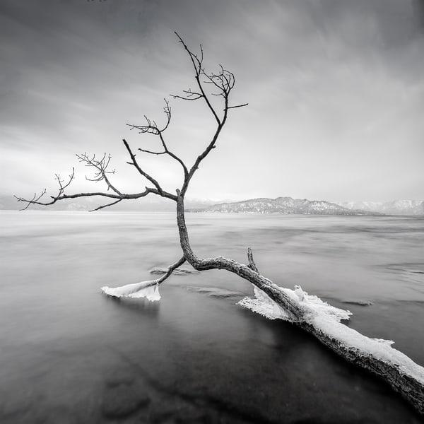 Hokkaido Study21 Art   Roy Fraser Photographer