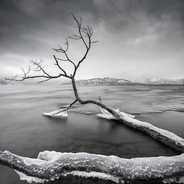 Hokkaido Study22 Art   Roy Fraser Photographer