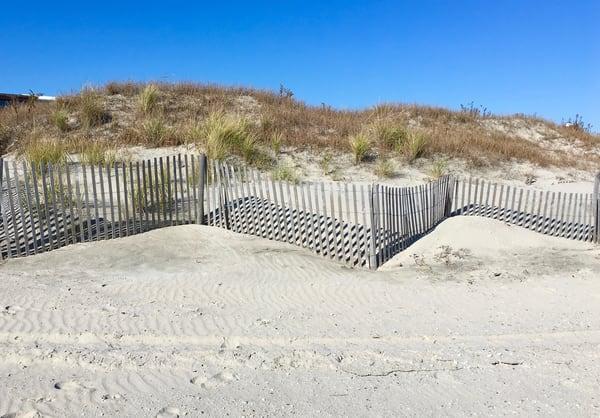Beach photographs inspired by nature: shop prints/shop.malinskystudio.com
