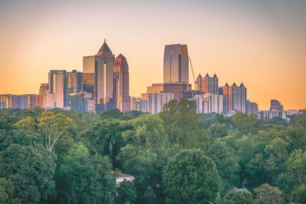 City in the Trees | Susan J Photography