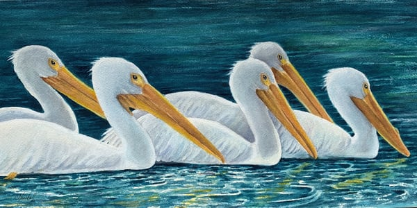 Pelicans on Parade, Original Watercolor Painting