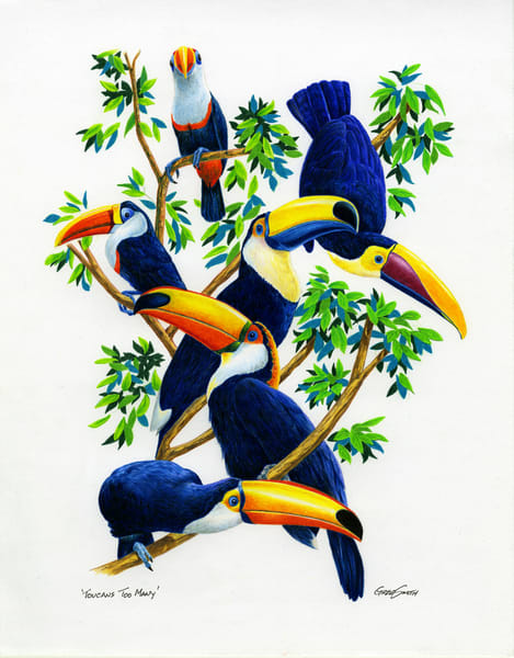 Toucan Too Many, a color pencil painting of this tropical bird by Greg V Smith