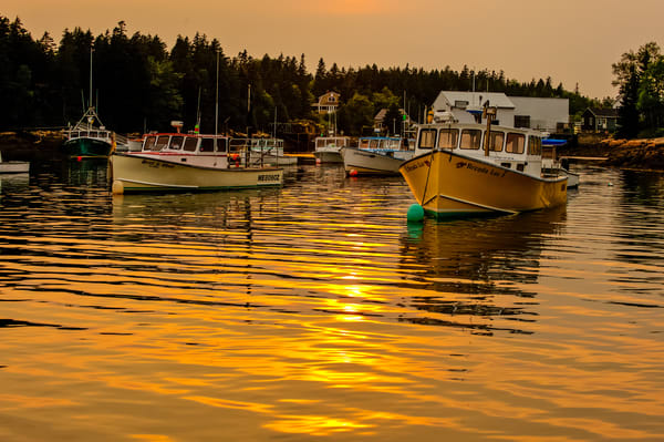 Maine Lobster Boats at Sunset