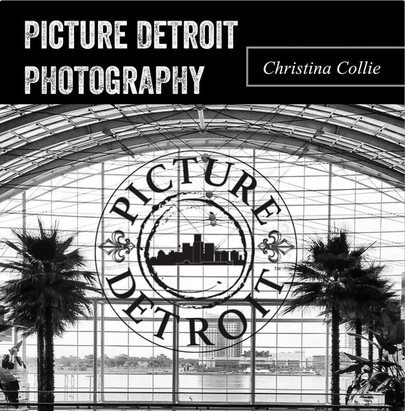 Picture Detroit artist photography book