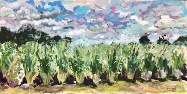 Louisiana Plein Air Landscape Paintings by Artist Christina Juran