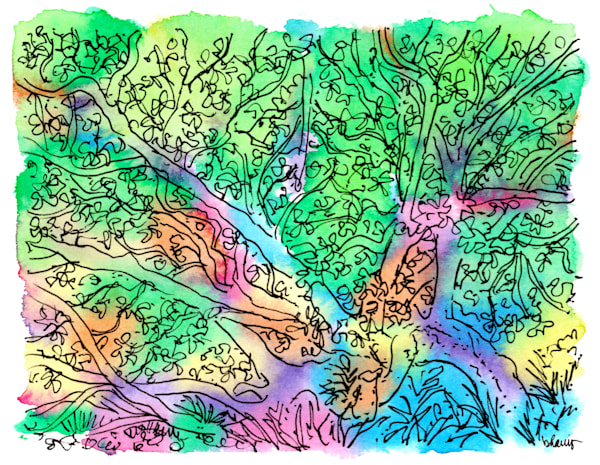 live oak, jungle gardens, avery island, louisiana:  fine art prints in cheerful watercolor available for purchase online