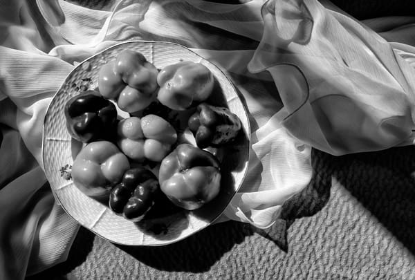 My Peppers Photography Art   GW Fine Art Images