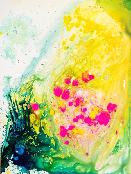 When I Gathered Cherry Blossoms In A Jar Art | Éadaoin Glynn