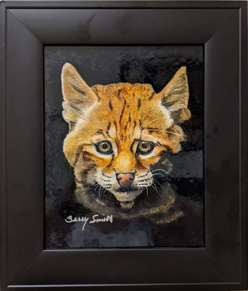 Berry Smith - original artwork - animals - watercolor - Baby Bobcat