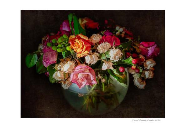 Fading Flowers V1   Signed 2020 Photography Art | Carol Brooks Parker Fine Art Photography