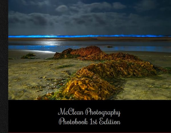 McClean Photography San Diego Photobook First Edition