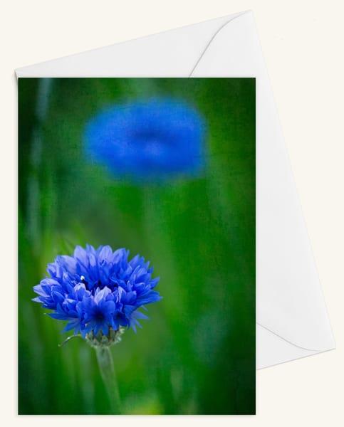 Garden Blues Blank 5x7 Card