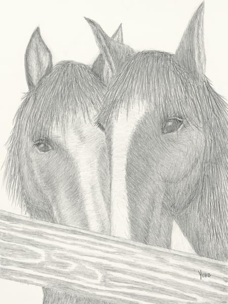 'sisters' Wild Pony Collection Photography Art | Nature's Art Productions