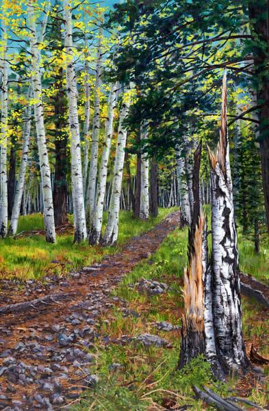 Aspen Trail Art   Roxana Sinex Art