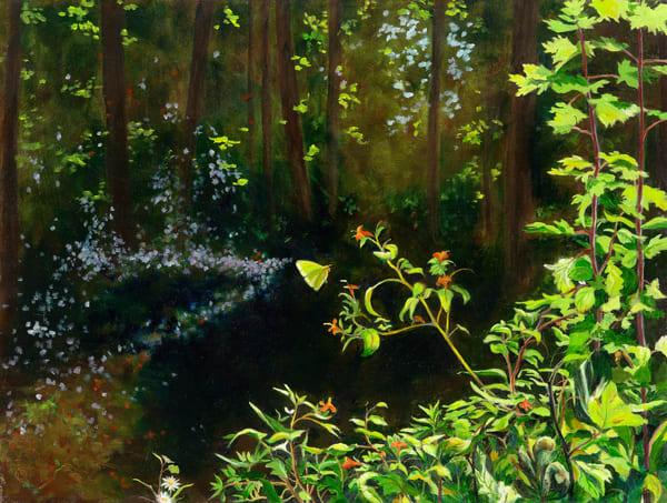 Forest Deep Art   Roxana Sinex Art