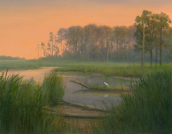 *Blackwater Preserve With Egret* Art | Tarryl Fine Art