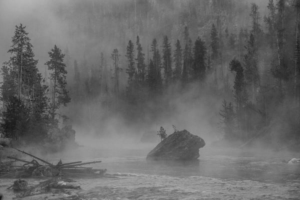 Maverick   Firehole, Yellowstone Photography Art | Casey McFarland Photography