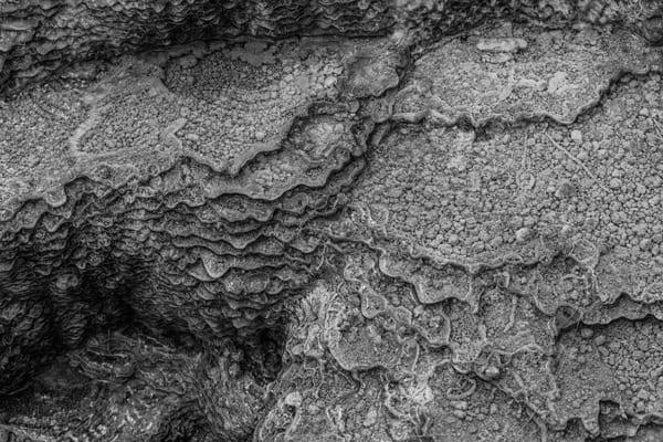 Mini Mammoth Yellowstone Photography Art | Casey McFarland Photography