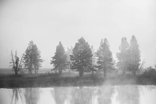 Into The Mystic  Yellowstone River Photography Art | Casey McFarland Photography