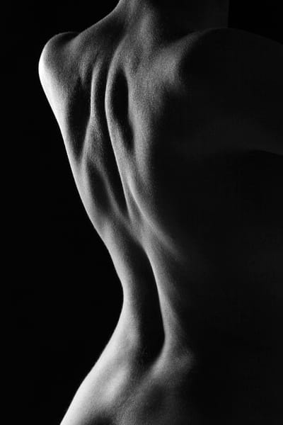 A Body From The Back Photography Art   Christopher Grey Studios