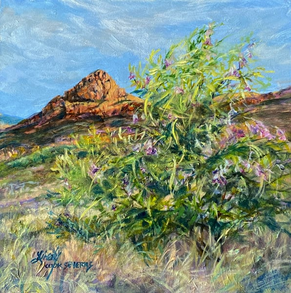 Lindy Cook Severns Art | Desert Willow Dawn, original oil