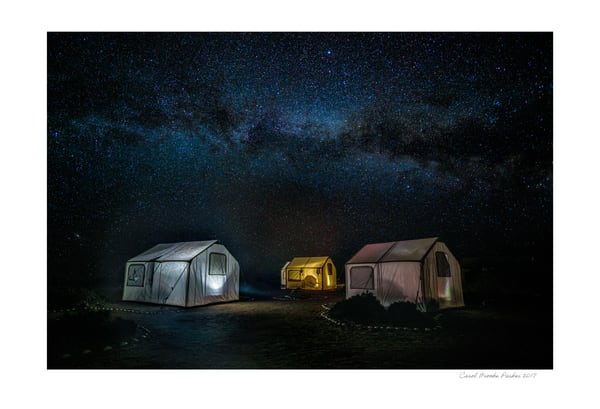 Camping Under Starlight   Signed 2017 Photography Art | Carol Brooks Parker Fine Art Photography