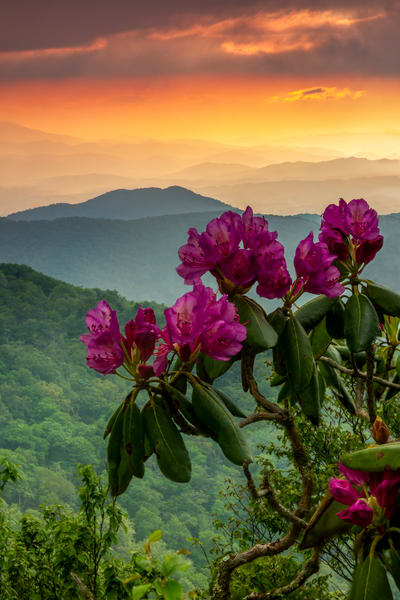 Nc Essence Photography Art | Red Rock Photography