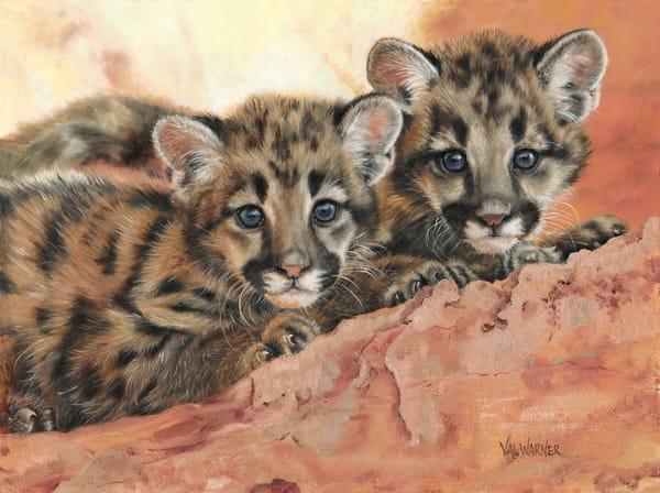 Kitten Cuties Art | Art by Val Warner