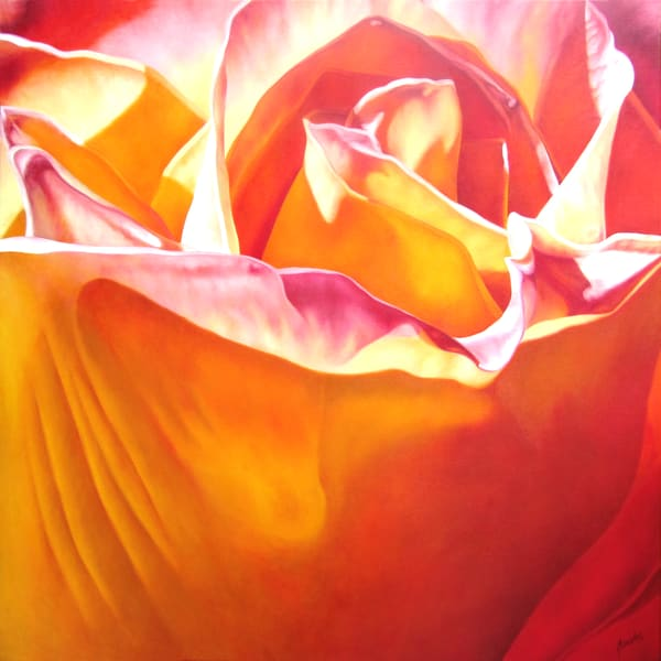 Orange Passion   Prints Art | Mercedes Fine Art