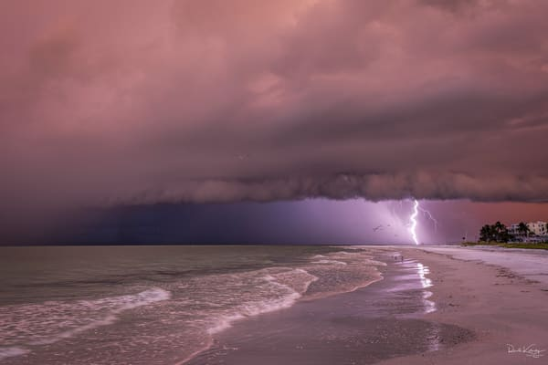 Birds, Bolts and Shelf Clouds at Siesta Key