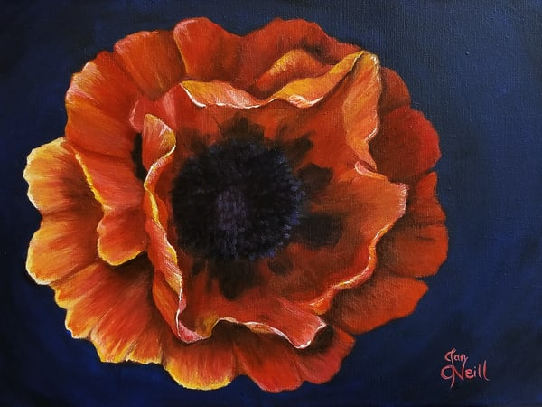JONeill-Reddish-Poppy