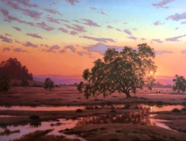 Live Oak Sunset Reflection  Art | Terry Sauve Fine Art